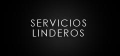 SERVICIOS LINDEROS copy